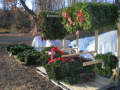 farm_pics_with_wreathes_004