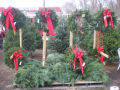 farm_pics_with_wreathes_023