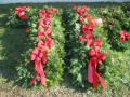 farm_pics_with_wreathes_029