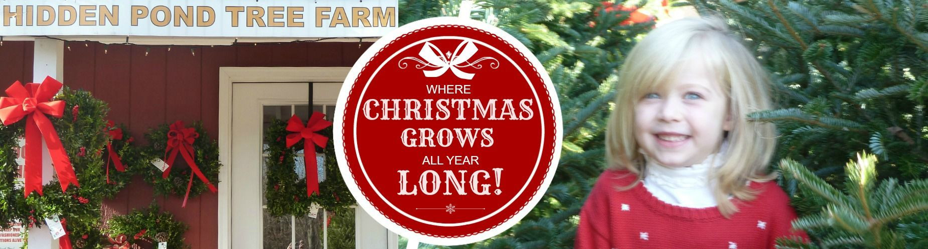 Christmas Grow ALl Year Long
