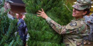Christmas Trees Say Thank You To Our Military Families