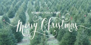 Wishing You A Very Christmas!